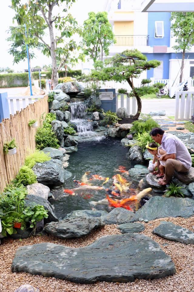 Hồ cá Koi trong khuôn viên sân vườn